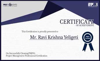 Mr. Ravi Krishna Yeligeti